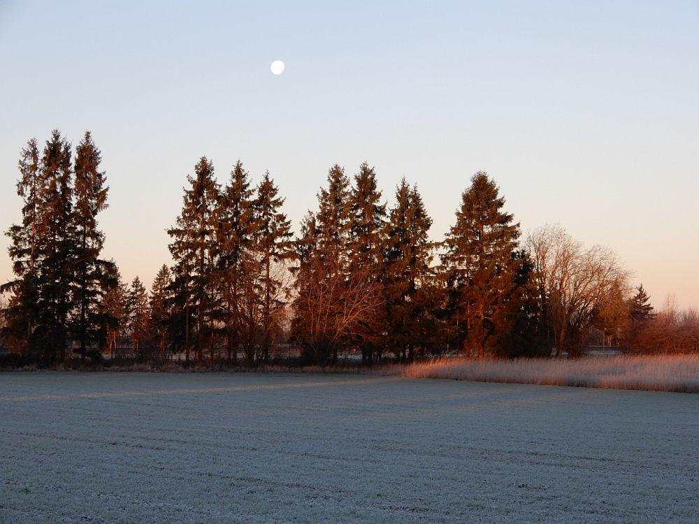 Hommik päikesetõusu ajal