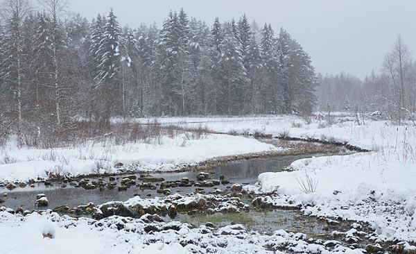 Der Boden des Flusses